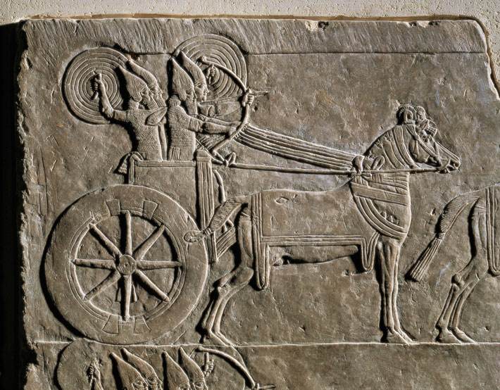 Horses Assyrian Warchariot