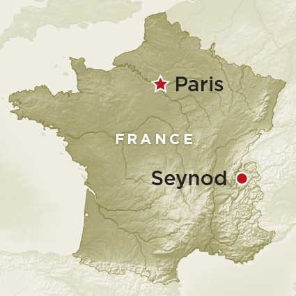 Artifact Map France Seynod