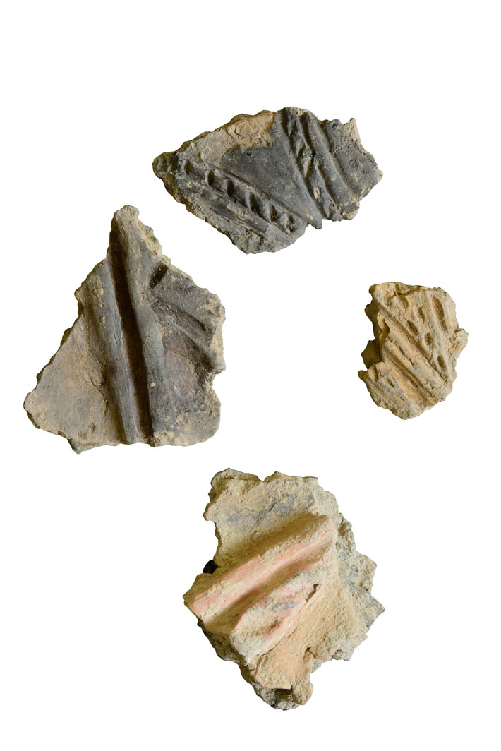 Neolithic Europe's Remote Heart - Archaeology Magazine