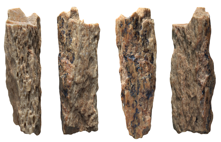 Top Ten Russia Denisova Cave Bone Fragment