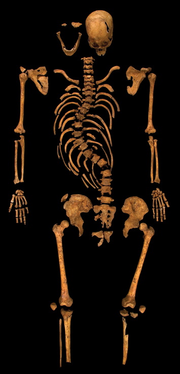 Decade England Richard III Skeleton
