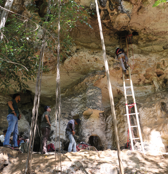 Digs Indonesia Cave