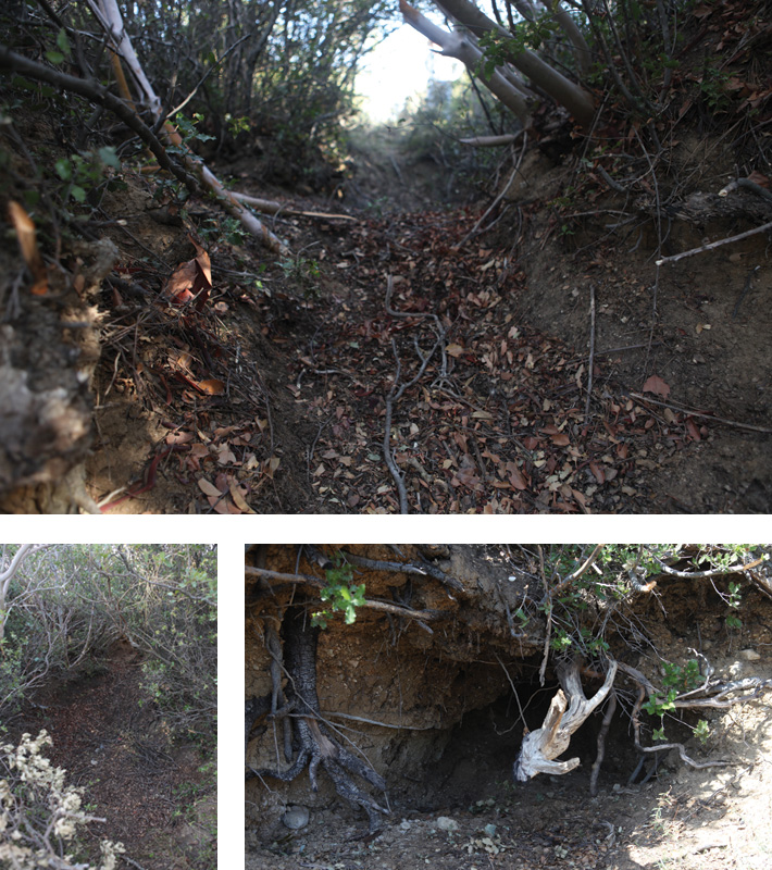 turkey-gallipoli-trench-dugout-tunnel
