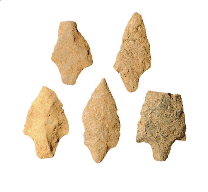 Philadelphia-Bartram-Garden-Prehistoric-Points