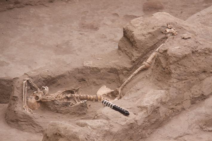 Trenches Peru Sacrifice