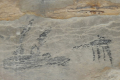ATW Madagascar Rock Art