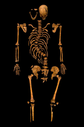 richard-iii-skeleton
