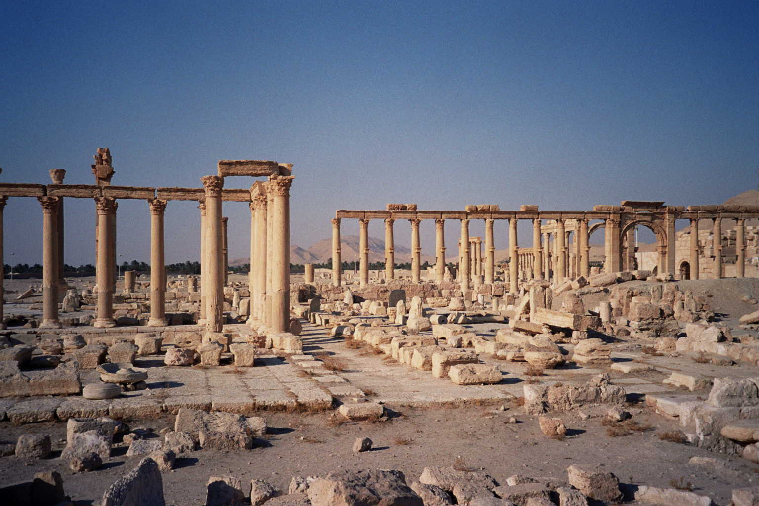 UNESCO Warns of Looting in Syria