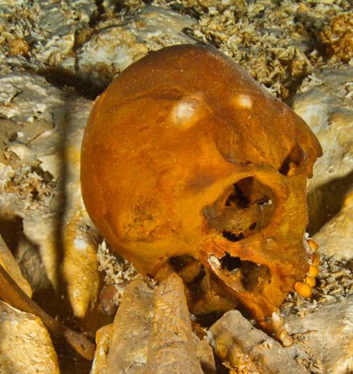 """Naia"" Shares Genetic Signatures with Modern Native Americans Naya-Cranium-Mexico"