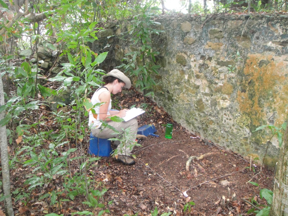 Virgin-Islands-caribbean-excavation-site-magic