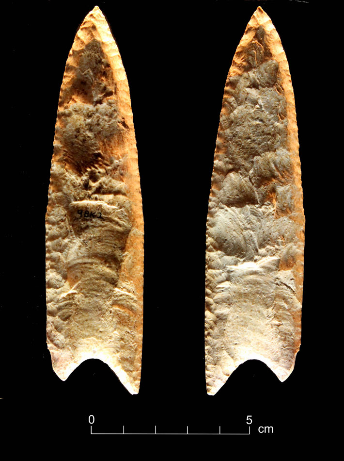 Blood Residue From Ancient Tools Tested Paleoindian-Redstone-Point-Residue