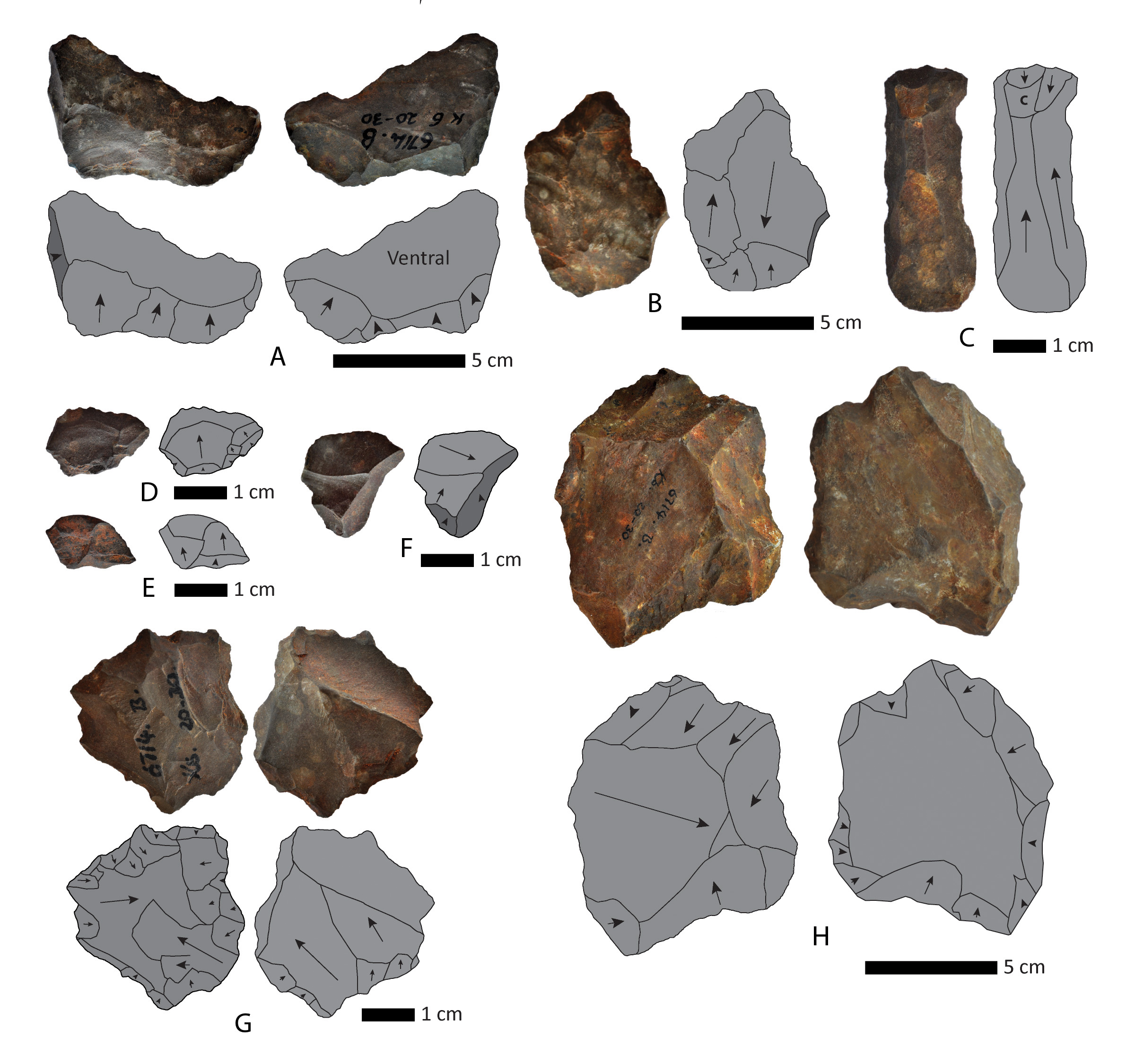 South-African-Stone-Tools