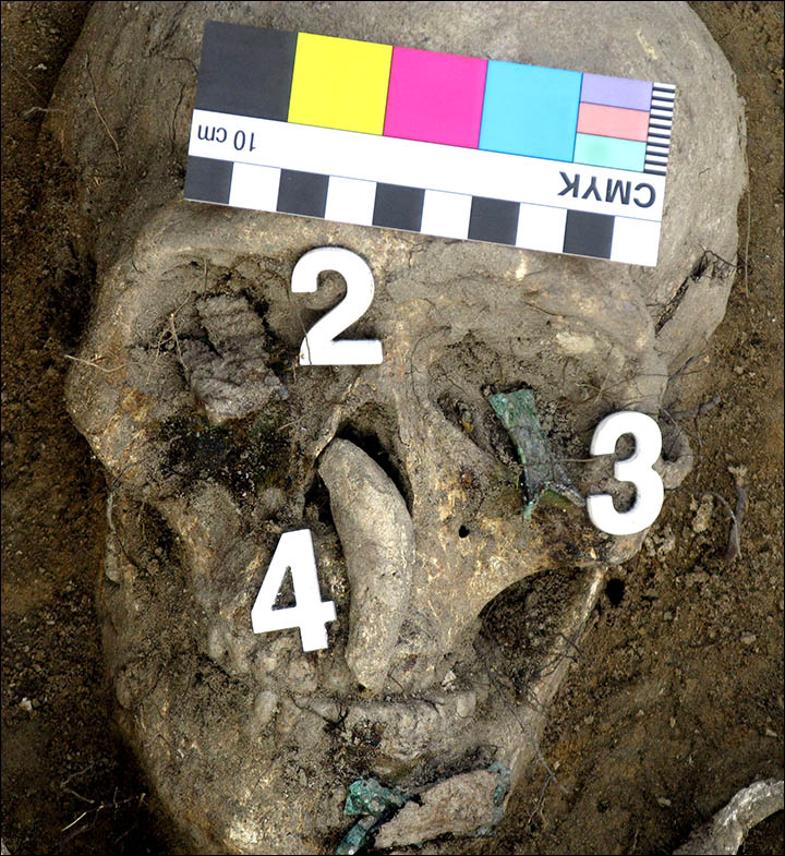 """Great Warrior"" Burial Unearthed in Siberia"