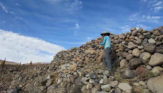 Atacama Desert Farming