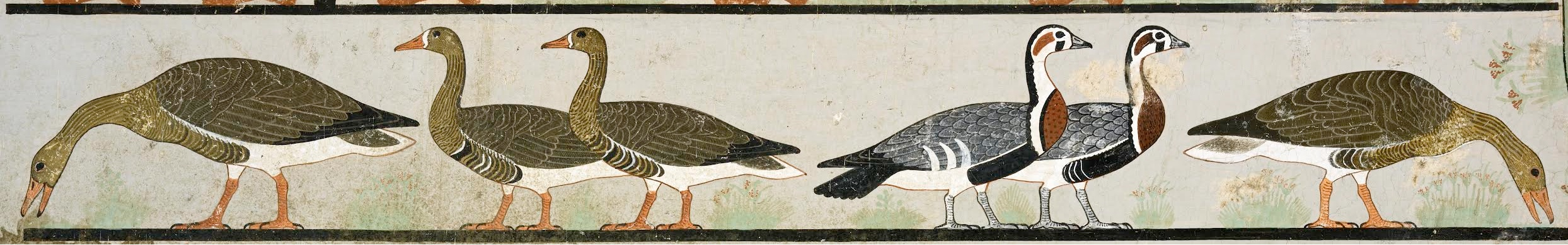 Egypt Geese Forgery