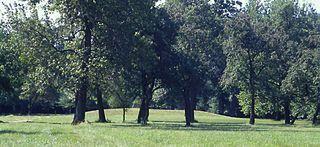 Cahokia Mound 72