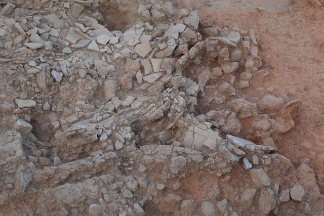 Mycenaean palace Laconia