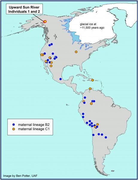 Alaska infant DNA