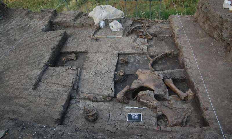paleolithic butchered elephant greece marathousa jpg