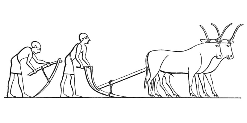 impact of the neolithic revolution The neolithic revolution occurred when human societies began to transition from a lifestyle based on hunting and gathering to a lifestyle based on farming and domesticated animals.