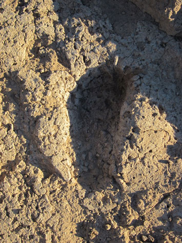 Southwest Footprint Arizona