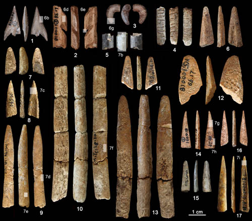 China Paleolithic bone tools