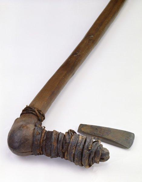 Ötzi murder theory