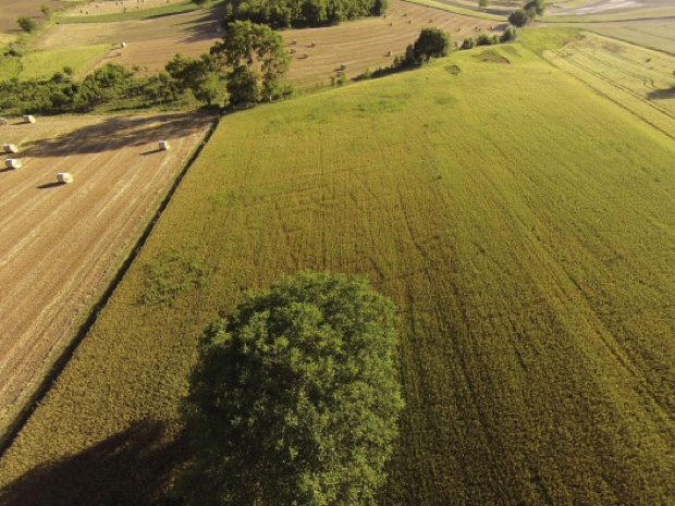 Drone Photos Reveal Ancient Settlement  - Archaeology Magazine
