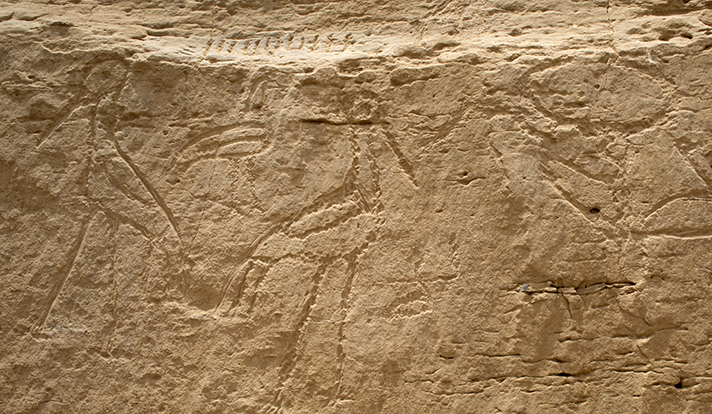 Egypt rock art