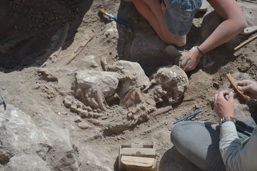 Israel Gezer Skeleton Victim