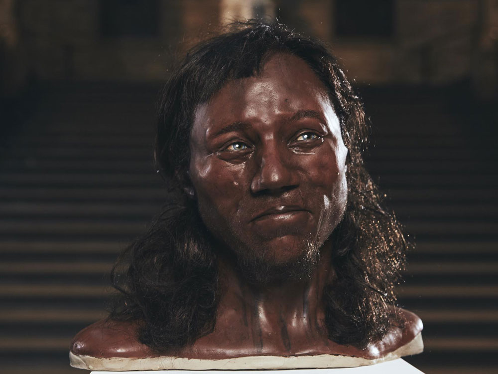 Cheddar Man reconstruction
