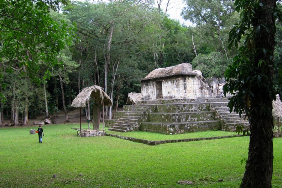 Isotope Analysis Offers Clues to Maya Diet - Archaeology Magazine