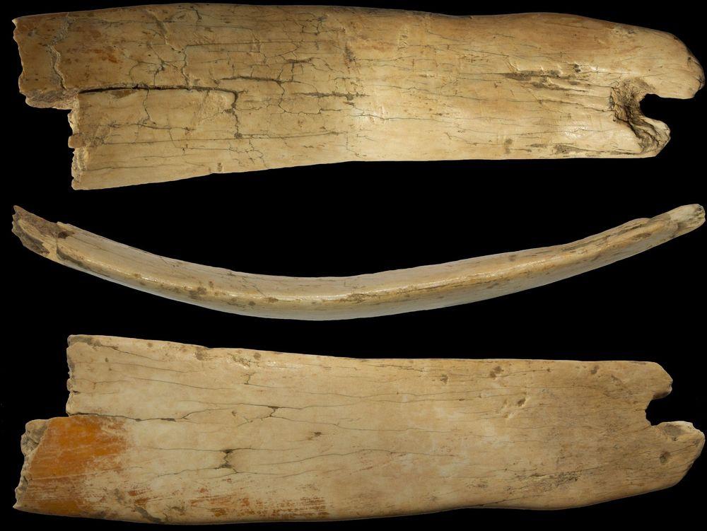Denisovan ivory tiara