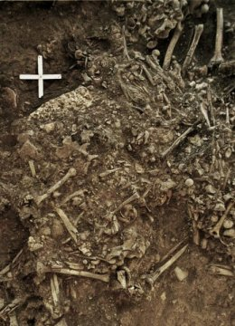 Sweden Neolithic plague