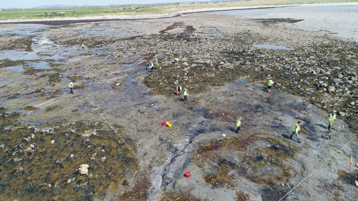 Submerged Prehistoric Site Discovered in Scotland
