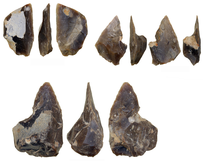 Neanderthal Tool Workshop Unearthed in Poland - Archaeology Magazine