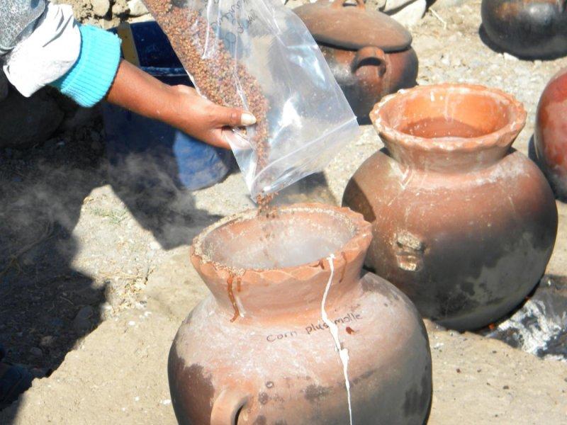 Wari Beer Production Analyzed - Archaeology Magazine