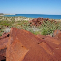 Rock Art in Australia May Depict 19th-Century British Ship - Archaeology Magazine