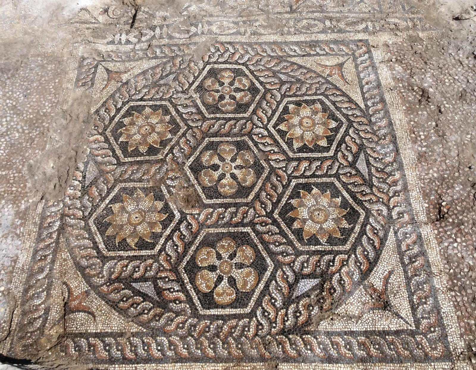 Well-Preserved Mosaic Floor Found in Roman Egypt - Archaeology Magazine