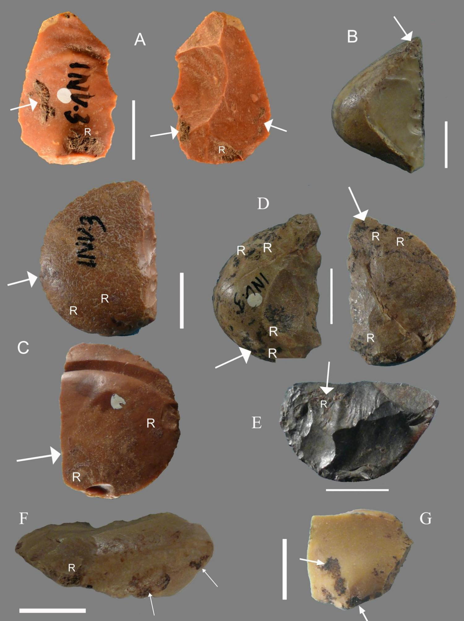 Adhesive Detected on Neanderthal Tools - Archaeology Magazine
