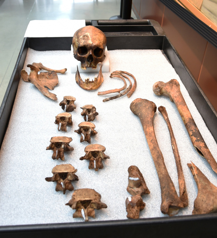 "Connecticut ""Vampire"" Identified - Archaeology Magazine"