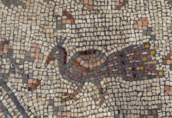 """Mosaic Uncovered in Israel's """"Burnt Church"""" - Archaeology Magazine"""