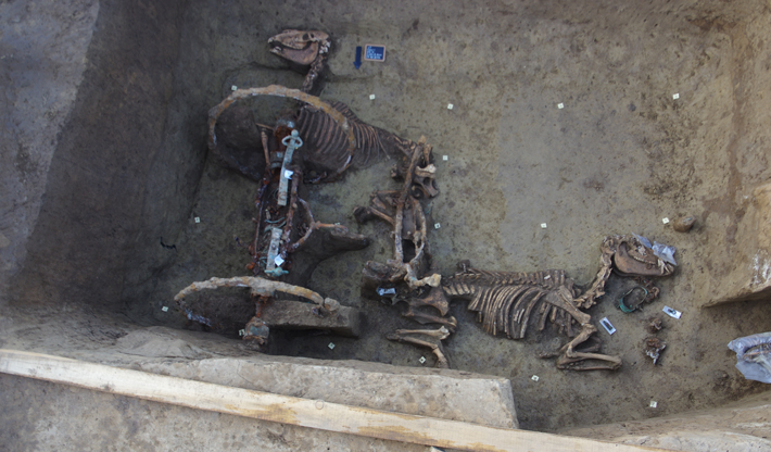 Roman Chariot Unearthed in Croatia - Archaeology Magazine