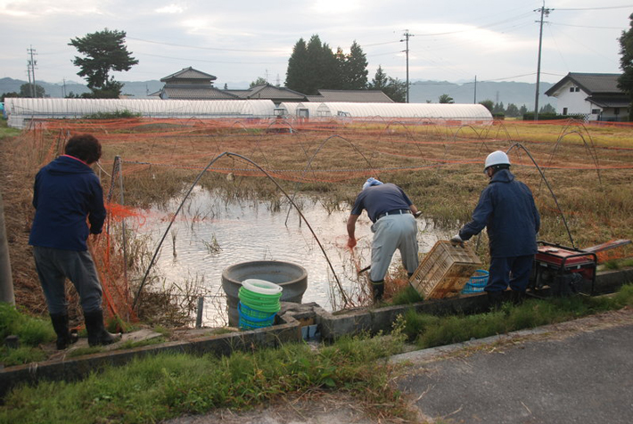 Evidence of Fish Farming Found at Neolithic Site in China - Archaeology Magazine