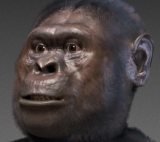 What Did Human Ancestors Eat? - Archaeology Magazine