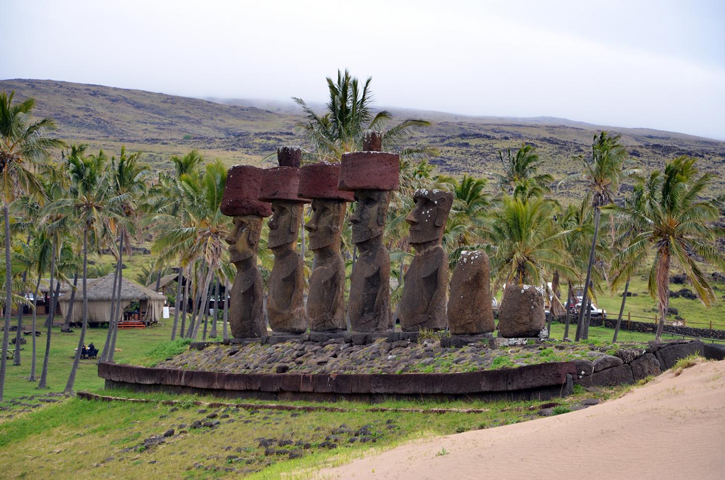 Questioning the Easter Island Collapse - Archaeology Magazine