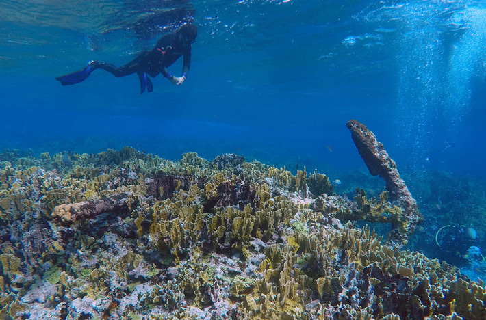 200-Year-Old Shipwreck Found in Caribbean Sea - Archaeology Magazine