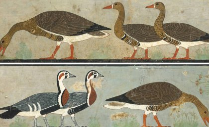 Egypt Geese Painting