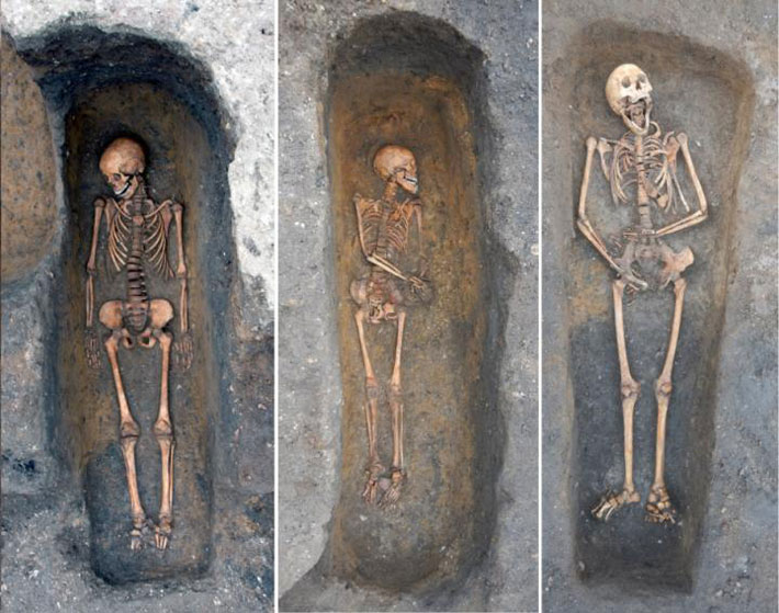 Anthropology & Archaeology News - cover